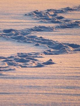 traces snow zig zag