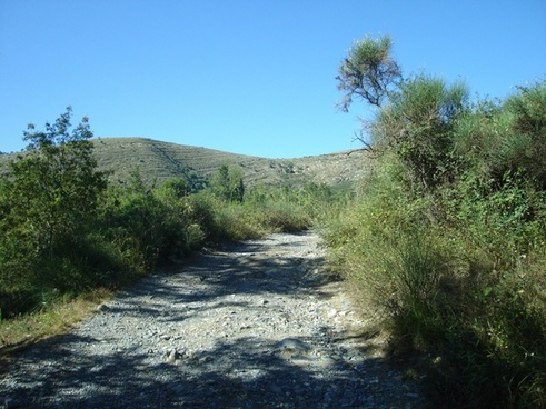 trail stones summer