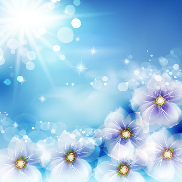 transparent flower with sunlight vector
