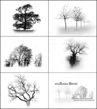 tree brush