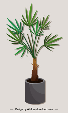 tree pot icon needle leaves colored 3d