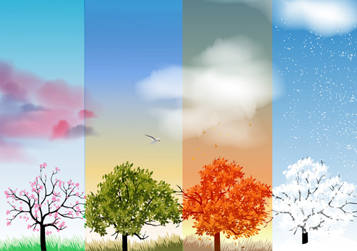 tree with four seasons vector