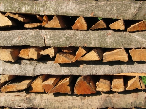 tree wood firewood wood