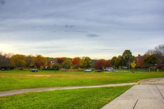 trees and fall colors in madison wisconsin