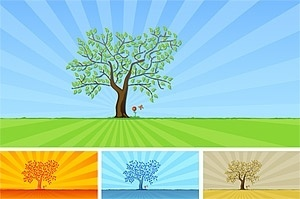 trees and grass flowers vector