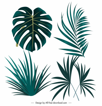 tropical design elements green leaf shapes sketch