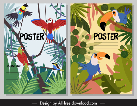tropical nature posters colorful toucan parrots leaves decor