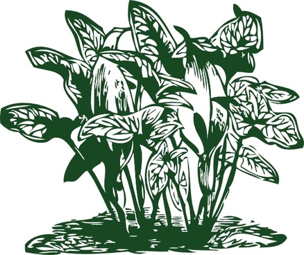 Tropical Plants clip art