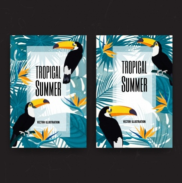 tropical summer background birds leaves decoration multicolored design