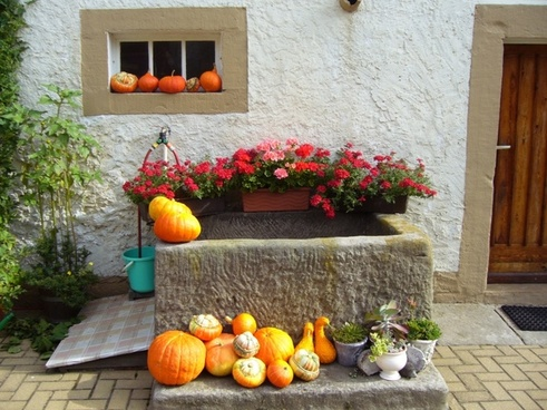 trough floral decorations pumpkins