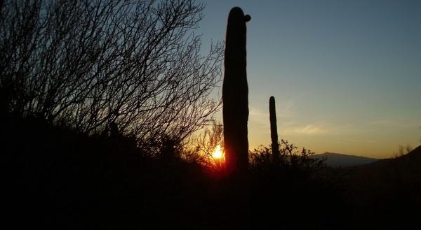 tucson sunrise 2012