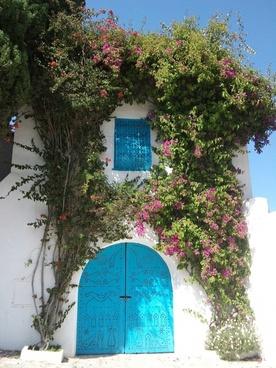 tunisia door flowers