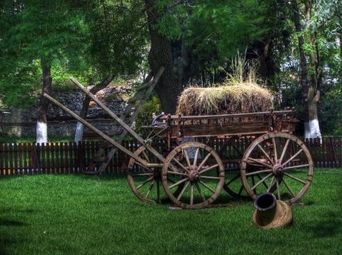turkey park wagon