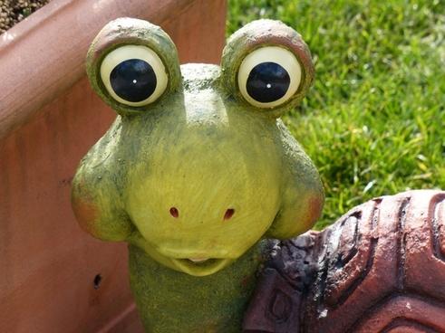 turtle eyes look