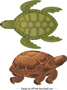turtle species icons dark colored sketch