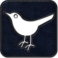 Twitter bird2 square