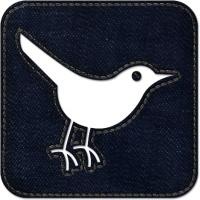 Twitter bird3 square