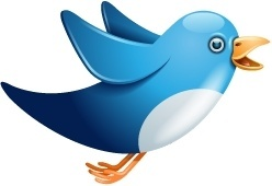 Twitter bird flying