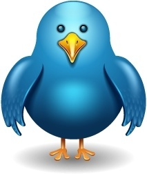 Twitter bird front