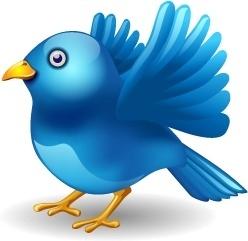 Twitter bird landing