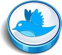 Twitter bird sign