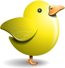 Twitter bird yellow