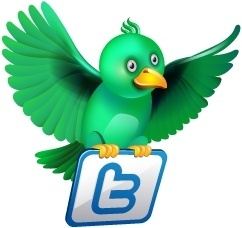 Twitter flying green