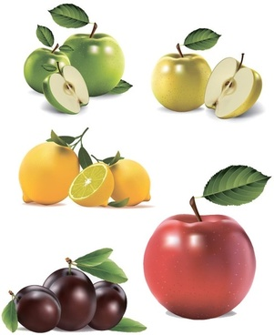 ultrarealistic fruit vector