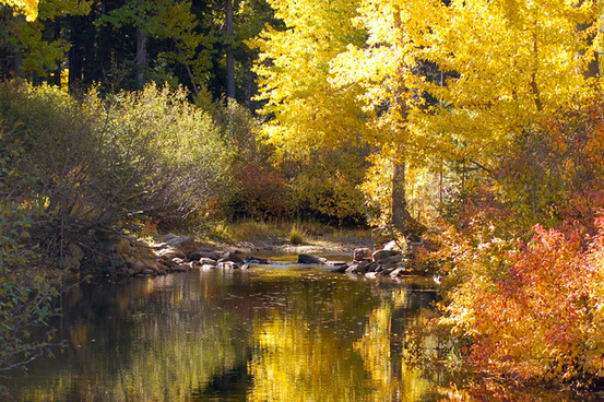 upper truckee river