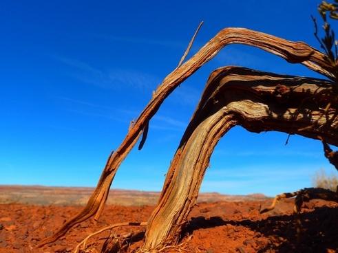 utah landscape desert