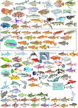 fishes icons collection various colorful types