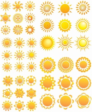 variety of sunflower patterns vector