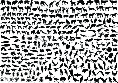 various animals silhouettes design vector set