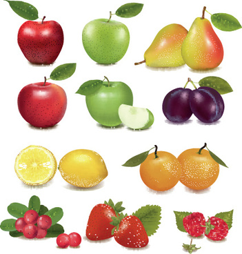 various fresh fruit design elements vector