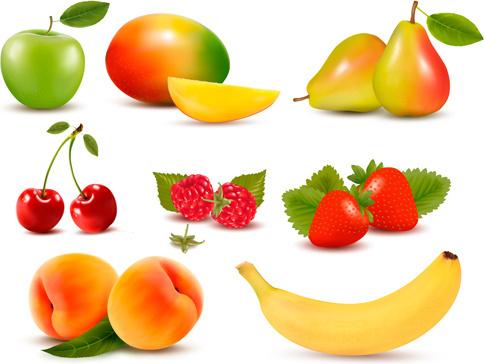 various fresh fruits design vector