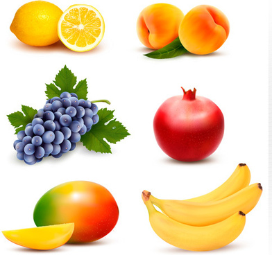 various fresh fruits vector design