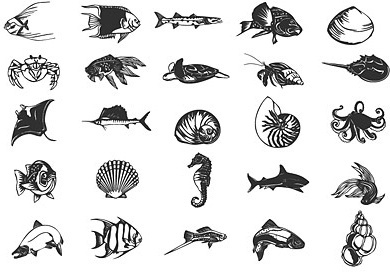 various ocean small animals design vector