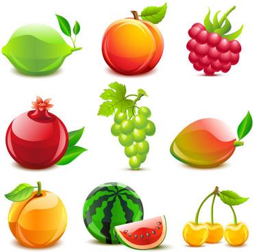 various tasty fruit elements vector