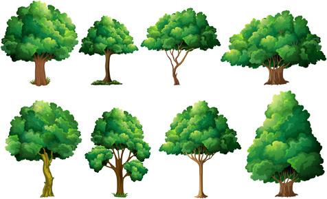 various tree vectors set