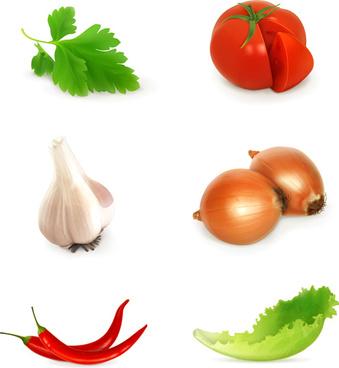 various vegetables design vectors