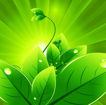 green leaves background sparkling ray decoration