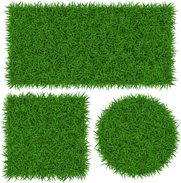 vector banner green grass design