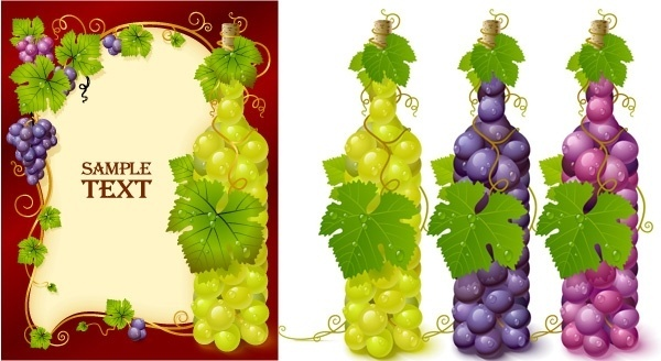 vector bottle filled with grapes