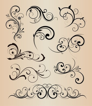 vector collection of design floral elements