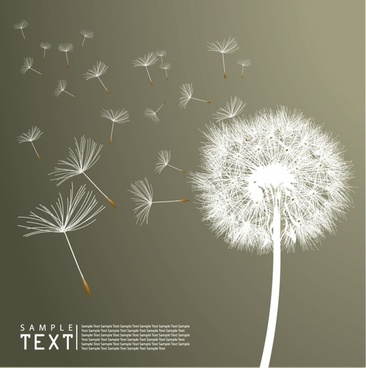 dandelion background flying white petals decor