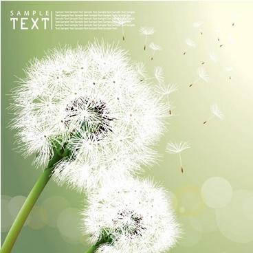 dandelion background realistic flying objects bright bokeh decor
