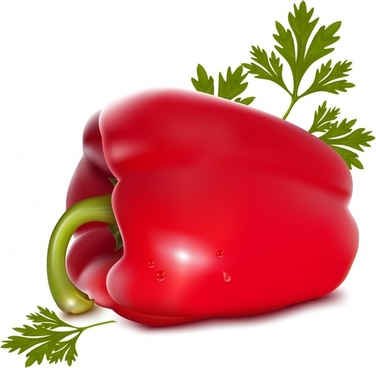 ripe pepper fruit vegetable background shiny realistic design