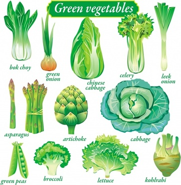 nutritious vegetables banner green icons sketch
