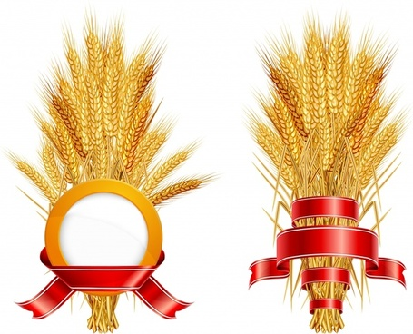 agriculture logotypes shiny modern 3d ribbon wheat sketch