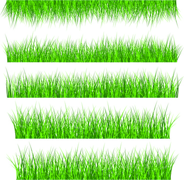 vector green grass elements set